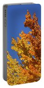 Brilliant Fall Color And Deep Blue Sky Portable Battery Charger