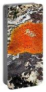 Brilliant Orange Lichen Portable Battery Charger