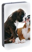 Brindle Boxer Pups Portable Battery Charger
