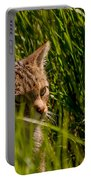 British Wild Cat Portable Battery Charger