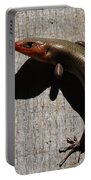 Broad-headed Skink On Barn  Portable Battery Charger