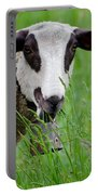 Brown And White Sheep Portable Battery Charger