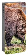 Brown Bear 201 Portable Battery Charger