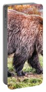 Brown Bear 202 Portable Battery Charger