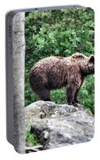 Brown Bear 208 Portable Battery Charger
