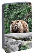 Brown Bear 209 Portable Battery Charger
