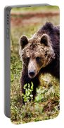 Brown Bear 210 Portable Battery Charger