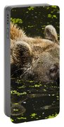 Brown Bear Swimming Portable Battery Charger
