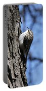 Brown Creeper Portable Battery Charger
