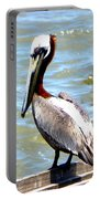 Brown Pelican And Blue Seas Portable Battery Charger