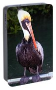 Brown Pelican Islamorada Portable Battery Charger