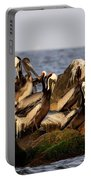 Brown Pelicans - Beauty Of Sand Island Portable Battery Charger