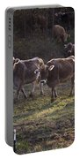 Brown Swiss Cows Coming Home Portable Battery Charger