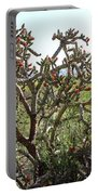 Buchorn Cholla Portable Battery Charger