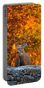 Buck Digital Painting - 01 Portable Battery Charger