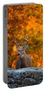 Buck In The Fall 01 Portable Battery Charger