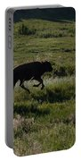 Buffalo Bison Roaming In Custer State Park Sd.-1 Portable Battery Charger