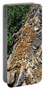 Bug Filled Bear Clawed Log Portable Battery Charger