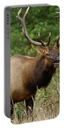 Bull Elk Rage Portable Battery Charger