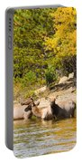 Bull Elk Watching Over Herd 5 Portable Battery Charger