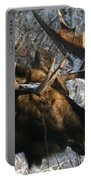 Bull In The Brush Portable Battery Charger