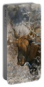 Bull In The Snow Portable Battery Charger