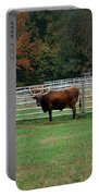 Bully Bull Portable Battery Charger