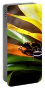 Bumble Bee Dart Frogs Portable Battery Charger