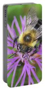 Bumblebee On A Purple Flower Portable Battery Charger