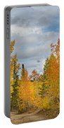 Burning Orange And Gold Autumn Aspens Back Country Colorado Road Portable Battery Charger