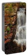 Bushkill Main Falls Portable Battery Charger