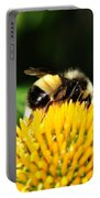 Busy Bee Collecting On Echinacea Pow Wow Portable Battery Charger