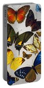 Butterflies, 19th Century Portable Battery Charger