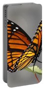Butterfly - Sitting On The Green Portable Battery Charger