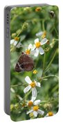 Butterfly 28 Portable Battery Charger
