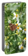 Butterfly 31 Portable Battery Charger
