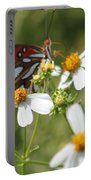 Butterfly 41 Portable Battery Charger