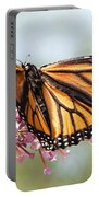 Butterfly Beauty - Monarch IIi Portable Battery Charger