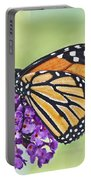 Butterfly Beauty-monarch Portable Battery Charger