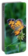 Butterfly In Square  Portable Battery Charger