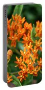 Butterfly Milkweed Portable Battery Charger