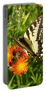 Butterfly On Orange Flowers Portable Battery Charger