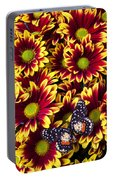 Butterfly On Yellow Red Daises  Portable Battery Charger