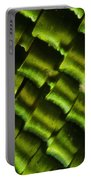 Butterfly Wing Scales Portable Battery Charger