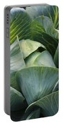 Cabbage In The Vegetable Garden Portable Battery Charger