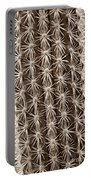 Cactus 19 Sepia Portable Battery Charger