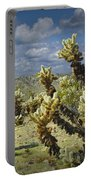 Cactus Also Called Teddy Bear Cholla Portable Battery Charger