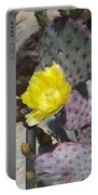 Cactus Flower 2 Portable Battery Charger by Snake Jagger
