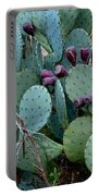 Cactus Plants Portable Battery Charger