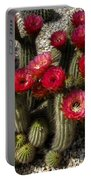 Cactus With Red Flowers Portable Battery Charger